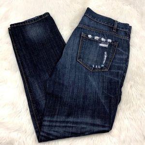 Ann Taylor LOFT Jeans 💫